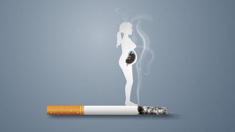 Η επίδραση του καπνίσματος στην εξωσωματική γονιμοποίηση